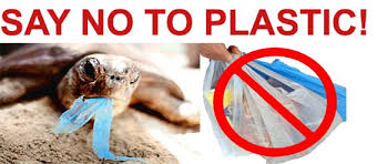 Image result for plastic