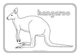 Ingenious Ideas Australian Animals To Colour Colouring Sheets Sb9002
