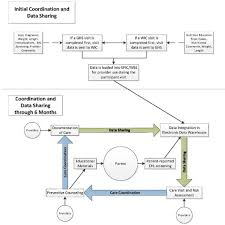Baby Care Chart Wee Baby Care Flow Chart For Care Coordination And Data