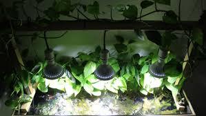 do it yourself led lighting. Aquaworld Aquarium Do It Yourself Diy Led Lighting System