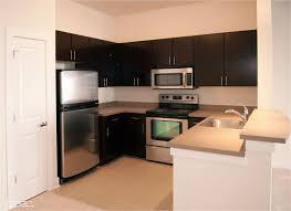 Apartment Small Kitchen Fresh Small Kitchen Design For Apartments Best Design 4561