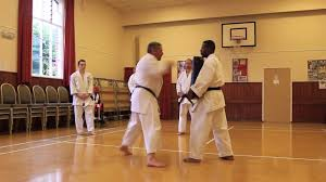 goju ryu karate pyramid bag workout