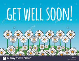Get Well Soon Poster Get Well Soon Card Poster Contains Daisy Flowers On A Green