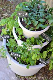 Kitchen Garden Planter Diy Stacked Herb Garden