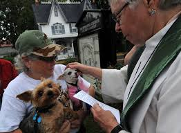 Blessing of the Animals touches hearts of pets | Cape Gazette