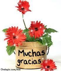 11 Muchas Gracias ideas | thankful, happy wishes, greetings