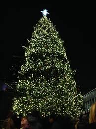 Faneuil Hall Christmas Tree Lighting 2016 Effects Of The Paris Attacks National Hunger Modern