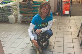 Eileen Johnson   Volunteers of the Month   PAWS Chicago