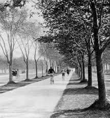 landscape architects must fight for public health the dirt an essay