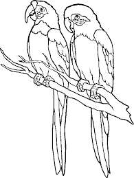 PARROT5 parrot outline pictures to pin on pinterest pinsdaddy on parrot outline template