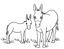 Small Picture Donkey Coloring Page Samantha Bell