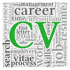 CV Editing Services Review UK   CV Writers Reviews Help with writing essays for scholarships