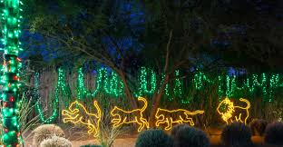 Zoo Lights Tucson Brew Lights 2018 Reid Park Zoo
