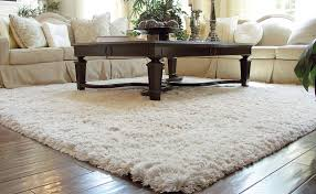 living the rug life best consumer reviews recommended products revuio com