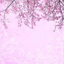 Background Pink Bunga Sakura 1024x1024 Wallpaper