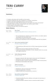File Clerk Resume Template Beauteous File Clerk Resume Samples VisualCV Resume Samples Database