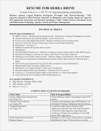 Management Analyst Job Description Custom Erp Implementation Project Manager Job Description Business Analyst
