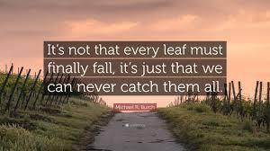 """What If I Fall Quote Gorgeous Michael R Burch Quote """"It's Not That Every Leaf Must Finally Fall"""