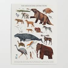 Animal Chart Of The Holocene Extinction Poster By Malachi13