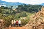 imagem de Iomerê Santa Catarina n-2