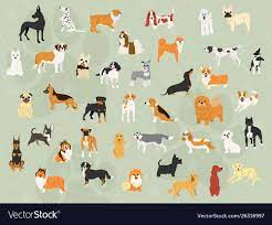 Cute dogs in action wallpaper design ...