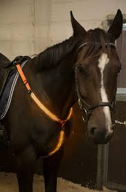 Light Up Horse Breast Collar Led Horse Breastplate Collar Usb Rechargeable Best High Visibility Tack For Horseback Riding Adjustable Sturdy Comfortable Hi Viz Equestrian