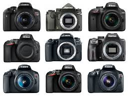 Best Entry Level Dslrs Of 2019 Ranked