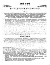 It Director Resume Samples Director Of It Resume Fine Design It ...
