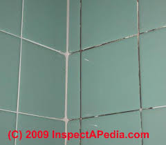 bathroom tile mold. Black Mold On Bath Tile Grout (C) Daniel Friedman Bathroom T