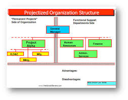 Project Organization Chart Gorgeous Organizational Structures