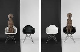 contemporary art furniture. Imago Galleries Summer Installation View Contemporary Art Furniture
