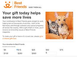 15 techniques used by top nonprofits to boost donor acquisition examples of great online donation forms a donation form from best friends animal society