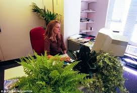 office greenery. More Greenery: When Plants Were Introduced, Staff Concentration And Satisfaction Increased They Said Office Greenery