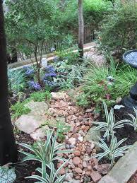 Texas Shade Garden Design Shade Plants For Central Texas Lisas Landscape Design
