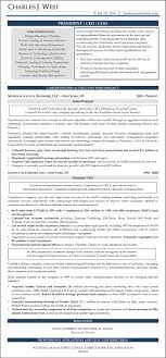 Sample Resume Chief Executive Officer Chief Operating Officer