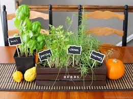 indoor herb planter
