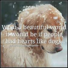 Cute Dog Quotes For Instagram Stunning Cute Dog Quotes For Instagram With Lab Quotes Deep Wise For Create