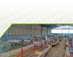view a selection of our past projects in our sheep sheds gallery