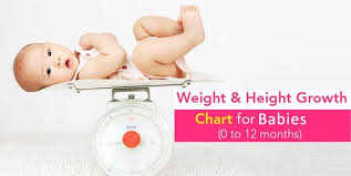 Indian Baby Height Weight Chart According To Age First 12
