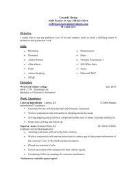 Resume Template For My First Job Sidemcicek Com