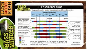 Bass Color Chart Related Keywords Suggestions Bass Color