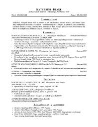 Resume Summary Samples Impressive Resume Summary Examples For As Resumes Good Musmusme