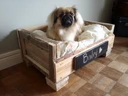 best pallet dog bed plans
