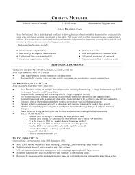 s agent contract contract s representative agreement essay on leadership in clinical nursing and management resume for