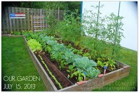epsom salt for gardening. OUR GARDEN 7-15-13 Epsom Salt For Gardening H