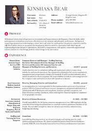 Finance Resume Format Experienced New Hr Consultant Resume Sample