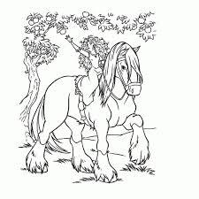 Leuk Voor Kids Prinses Merida Te Paard Paarden Kleurplaat Princes