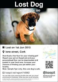 Lost Pet Flyer Maker Delectable Missing Cat Flyer Template Free Lost Pet Beautiful Poster Animal Uk