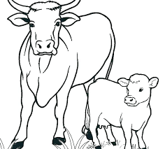 coloring book cow picture of a horse head how to draw pages unicorn