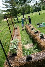 other than sticking plants into straw rather than into the ground the planting part is pretty similar to traditional gardening the spacing between plants